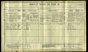 1911 Census for Stanley Rice (click to enlarge)