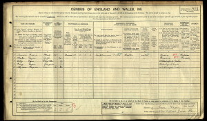The census record for the Fagan family