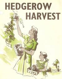Hedgerow Harvest poster